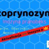 Na odporność dla dzieci izoprynozyna, inozyna, Neosine, Groprinosin, Aktualizacja, koronawirus Matka Aptekarka